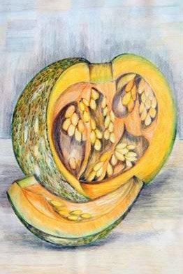 'Pumpkin' 2